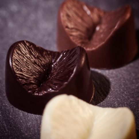 Suklainen Anus