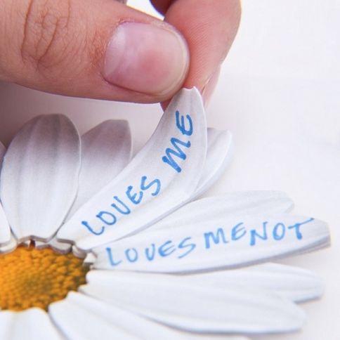 Rakastaa, ei rakasta Muistilaput