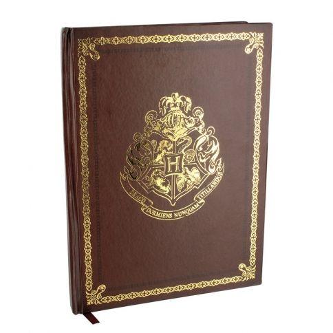 Harry Potter Muistivihko