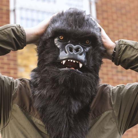 Mr. Gorilla Gorillanaamari